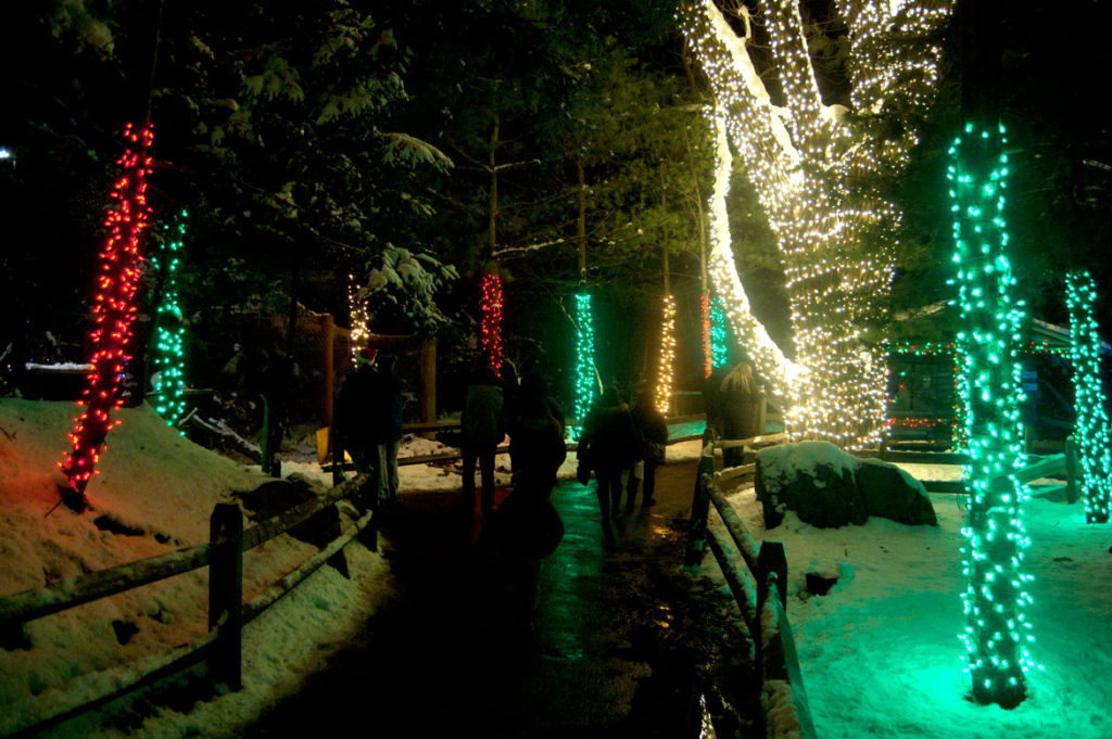 ZooLights at Stone Zoo. (Greg Cook)