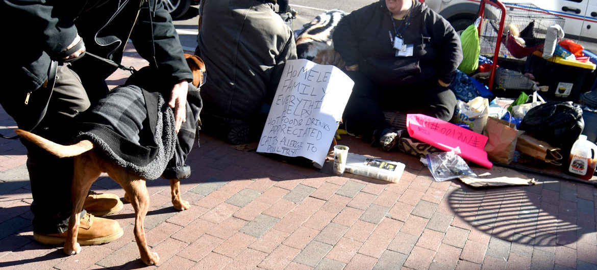 """Homeless family. Everything helps! Hot food & drinks appreciated. Cat is allergic to poultry!"" Harvard Square, Cambridge, Jan. 26, 2018. (Greg Cook)"