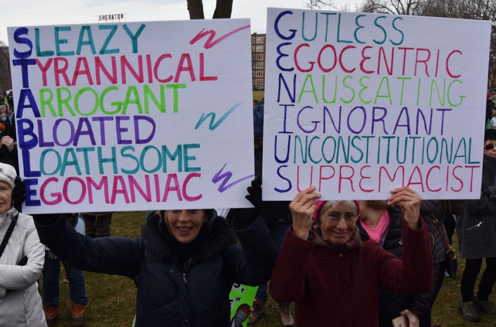 Cambridge/Boston Women's March at Cambridge Common, Jan. 20, 2018. (Greg Cook)