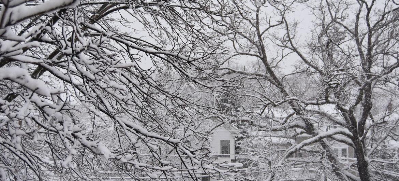 Snowstorm in Malden, Massachusetts, March 8, 2018. (Greg Cook)