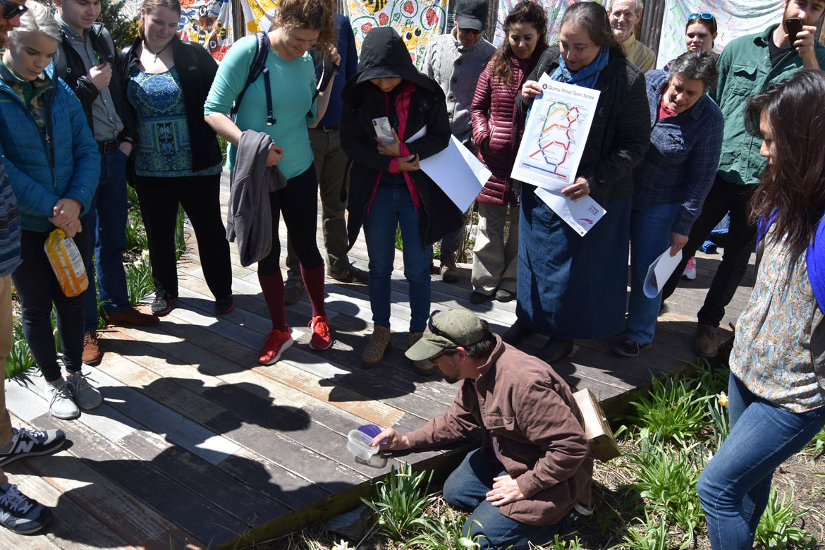 Jef C. Taylor (kneeling center) leads a nature walk at the Starting Over Festival, Somerville, April 22, 2018. (Greg Cook)