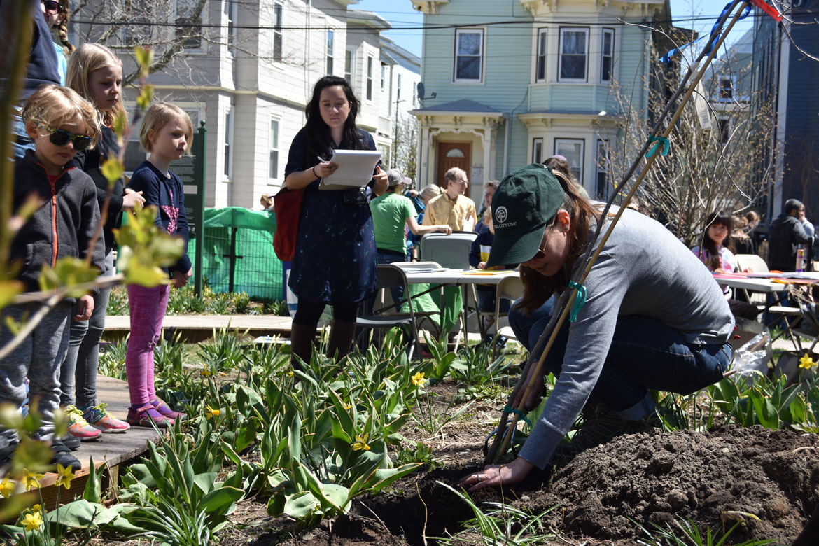 Planting a tree with City of Somerville Urban Forestry and Landscape Planner Vanessa Boukili at the Starting Over Festival, Somerville, April 22, 2018. (Greg Cook)