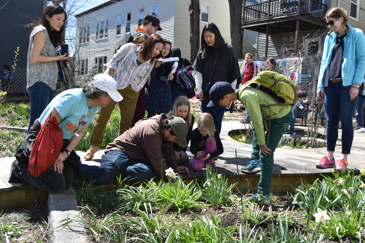 Jef C. Taylor (center in green hat) leads a nature walk at the Starting Over Festival, Somerville, April 22, 2018. (Greg Cook)