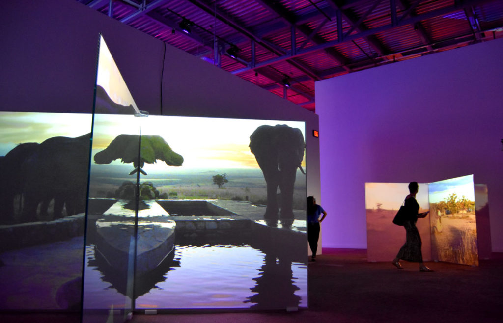 Theater's video installations about rare elephants (left) and rhinos at the ICA Watershed, June 26, 2018. (Greg Cook)