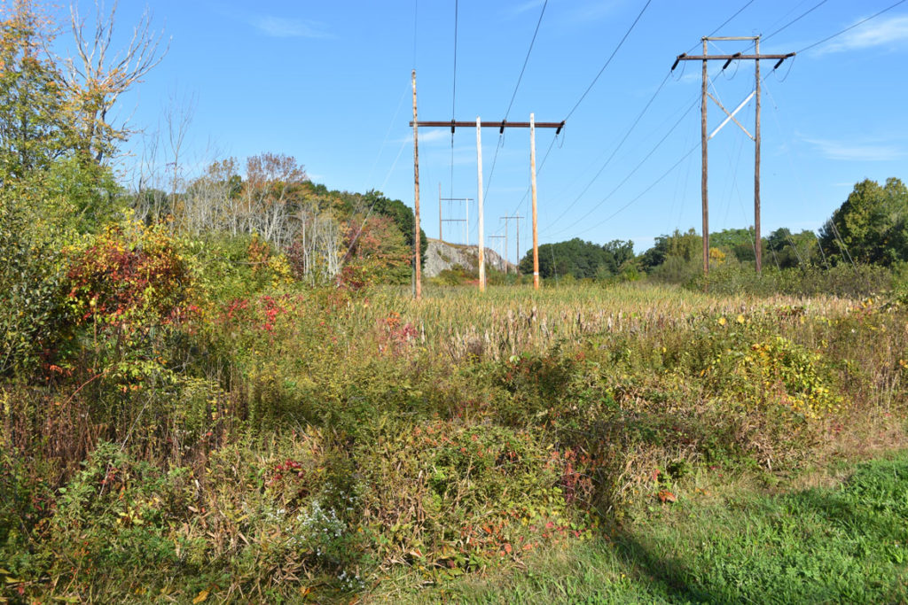 Power lines cross the Northern Strand Bike Trail near the boarder of Revere and Saugus, Massachusetts. Oct. 10, 2018. (Greg Cook)