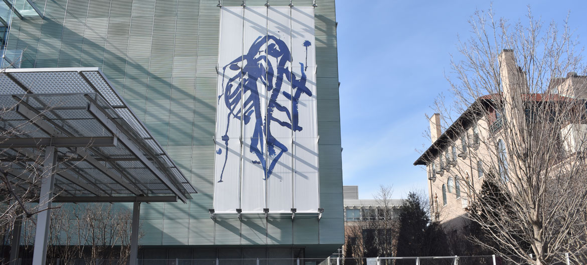 "Joan Jonas ""Blue to Blue"" banner on facade of Gardner Museum, Feb. 1, 2019. (Greg Cook)"