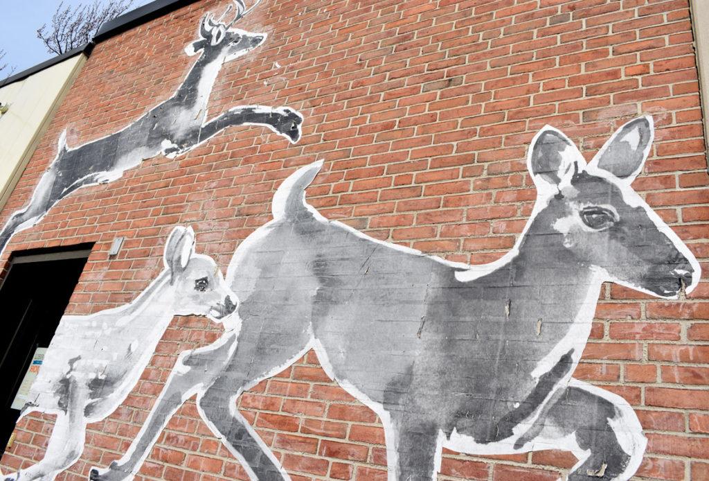 Eileen de Rosas's temporary mural on Arlington's Fox Library. (Greg Cook)