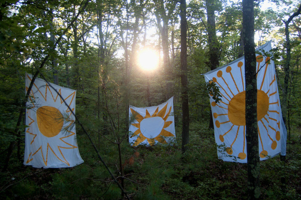 "Greg Cook's ""Sun"" banners in Middlesex Fells, July 16, 2017. (Greg Cook)"
