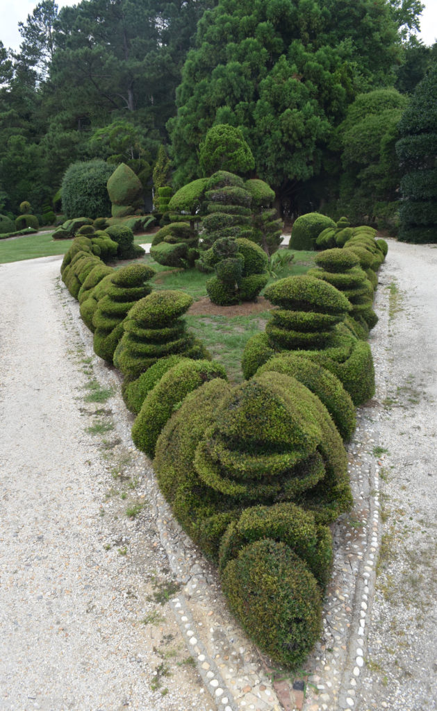 Pearl Fryar's Topiary Garden at Bishopville, South Carolina, June 20, 2019. (Greg Cook)