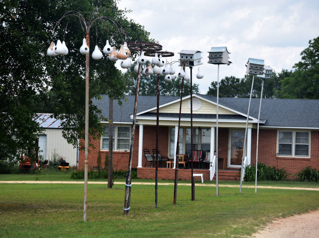 Bird houses at Bishopville, South Carolina, June 20, 2019. (Greg Cook)