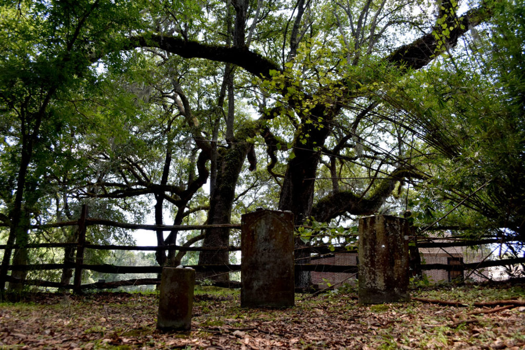 Graves of men thought to have been enslaved at Middleton Place, slave plantation at Charleston, South Carolina. June 21, 2019. (Greg Cook)