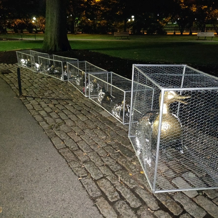 "Karyn Alzayer caged the ""Make Way for Ducklings"" statues In Boston's Public Garden to protest abuse of immigrants, Aug. 2, 2019. (Photo: Daud Alzayer)"