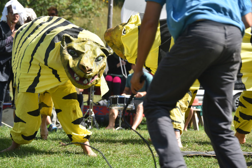 "Tiger act rehearsal for Bread and Puppet Theater's ""Diagonal Life Circus,"" Glover, Vermont, Aug. 25, 2019. (Greg Cook)"