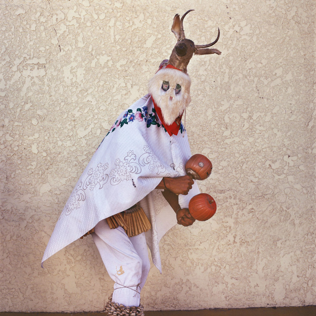 "Phyllis Galembo, ""Mayo Chapakoba _ Fariseo Mimicking Deer Dancer,"" 2008, from ""Mexico Masks 