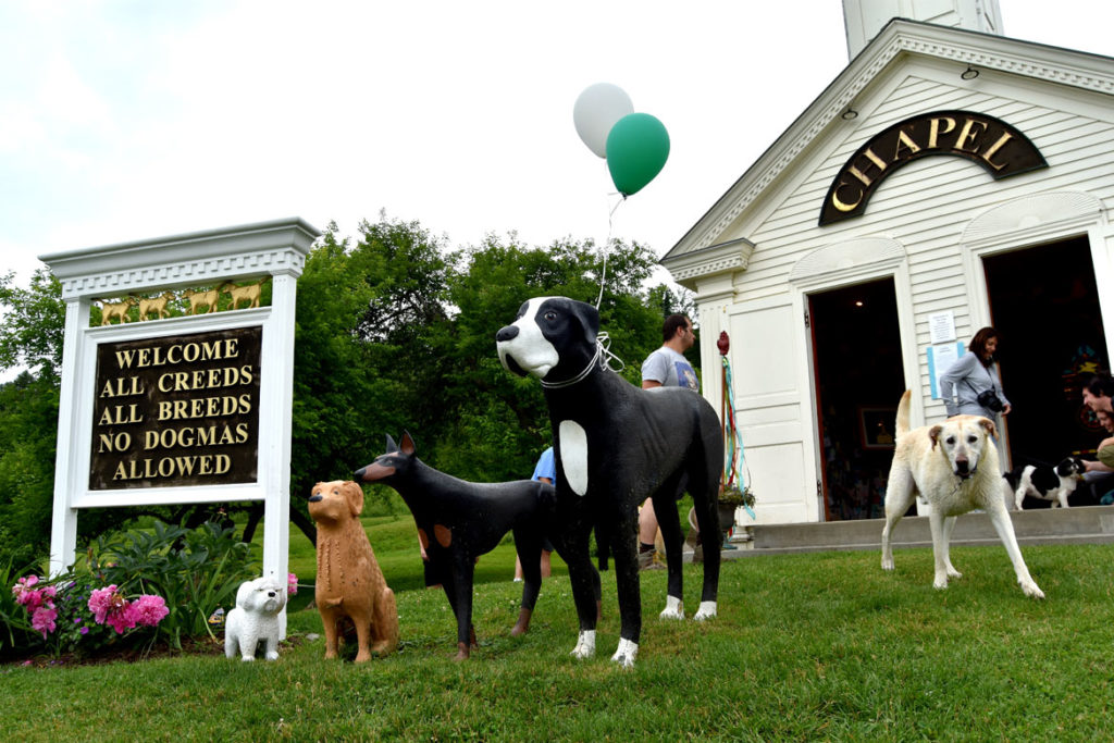 Dog Party at Stephen Huneck's Dog Chapel, St. Johnsbury, Vermont, June 23, 2018. (Greg Cook)