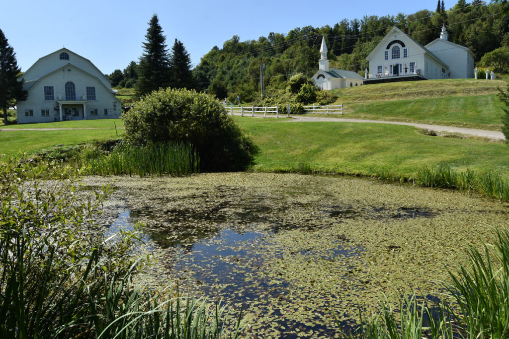 Water lily pond below the Dog Chapel and gallery (right) at Stephen Huneck's Dog Mountain, St. Johnsbury, Vermont, Aug. 26, 2019. (Greg Cook)