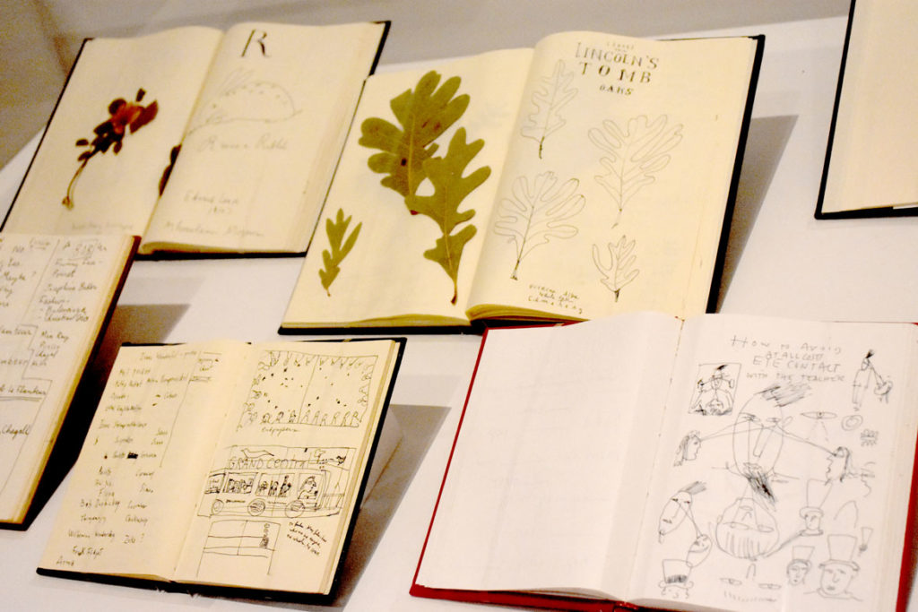 "Maira Kalman, notebooks from 1989 to 2013, in ""The Pursuit of Everything: Maira Kalman's Books for Children"" at Atlanta's High Museum of Art, June 25, 2019. (Greg Cook photo)"