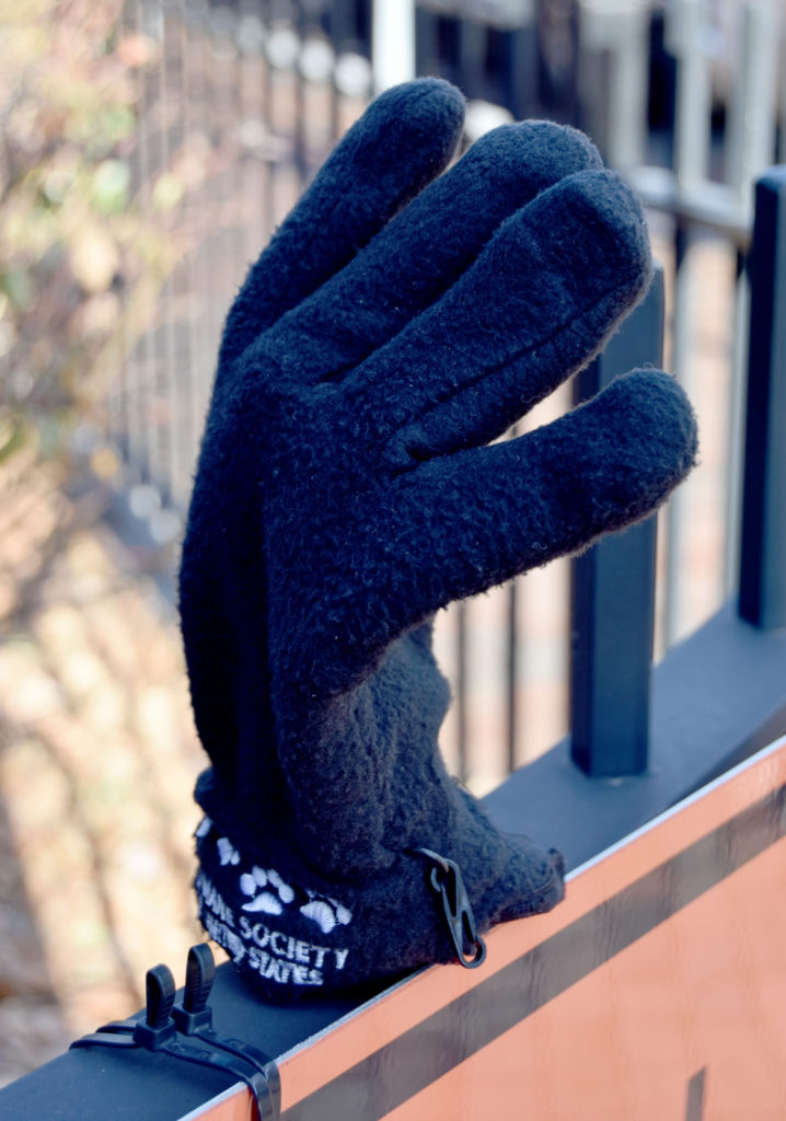 Lost glove spotted at Cambridge City Hall Annex, Inman Street at Broadway, Dec. 22, 2019. (Greg Cook photo)