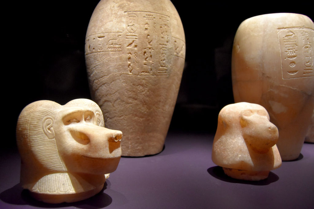 """Head of a canopic jar of Queen Atakhebasken, Napatan period, reign of Taharqa, 690-664 BCE, found at Nuri, travertine. Nubian leaders adopted Egyptian practice of canopic jars to house internal organs removed from body of deceased during mummification. The Baboon-headed Hapy protected the lungs. From """"Ancient Nubia Now"""" at Boston's Museum of Fine Arts, Jan. 15, 2020. (Greg Cook photo)"""