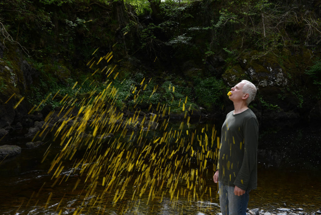 "Andy Goldsworthy, ""Gorse spits, sunny Dumfriesshire, Scotland, 30 May 2015 (detail),"" 2015. (© Andy Goldsworthy, courtesy Galerie Lelong & Co., New York)"