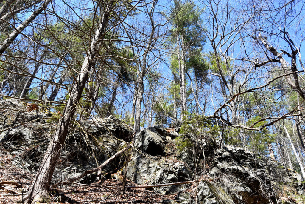 Rocky cliffs at Mount Misery in Lincoln, Massachusetts, March 26, 2020. (Greg Cook photo)