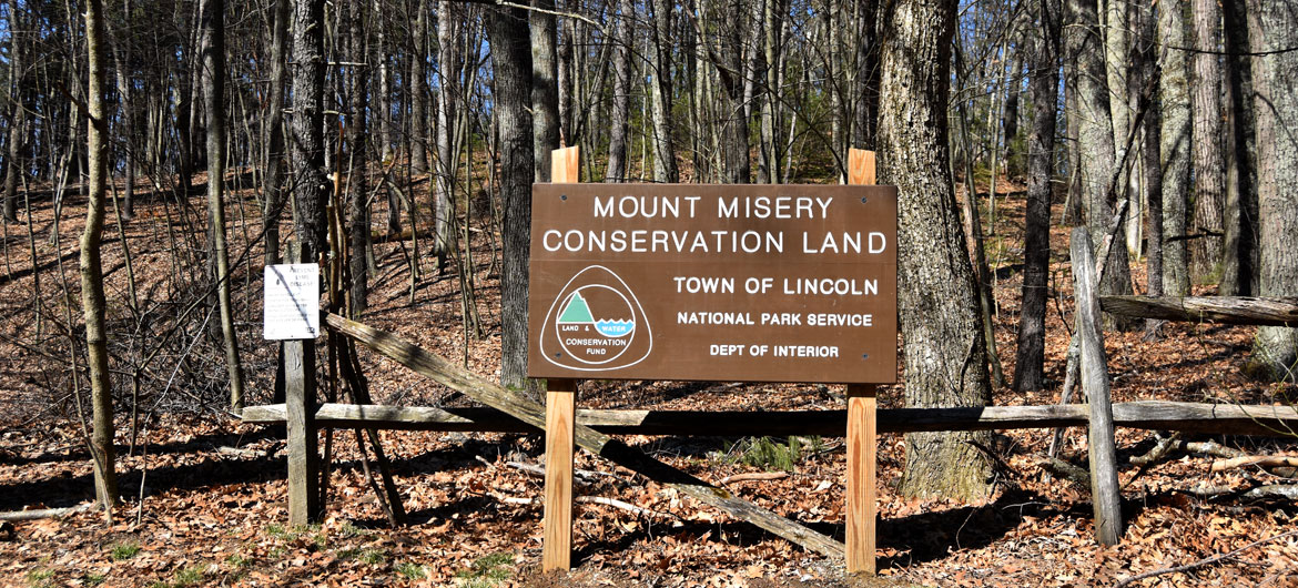 Mount Misery in Lincoln, Massachusetts, March 26, 2020. (Greg Cook photo)