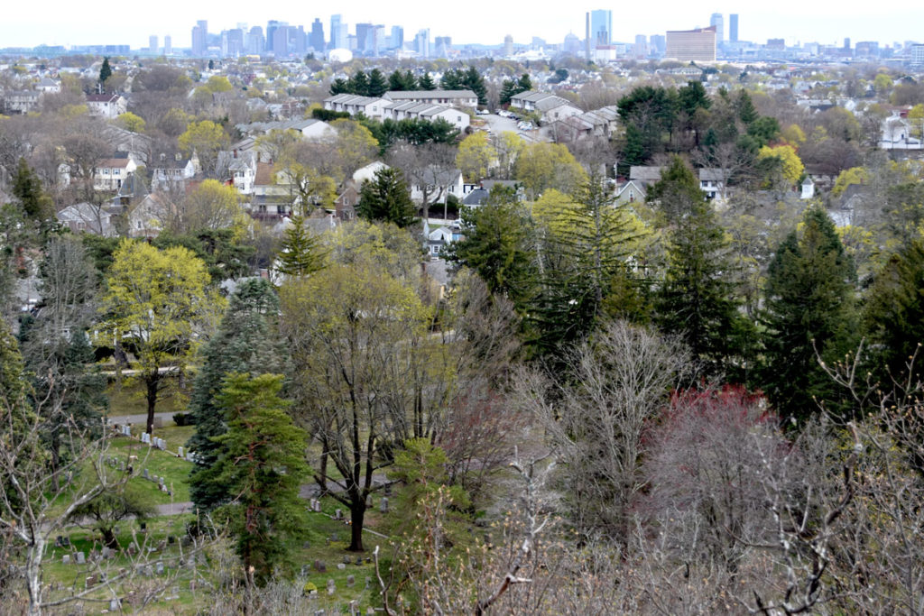 View from the top of Pine Banks Park across Forest Dale Cemetery in Malden to Boston, April 20, 2020. (Greg Cook photo)