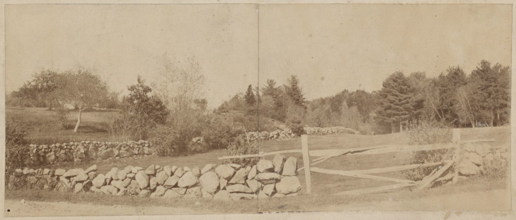 """Parks: View of stone wall and fence in Arnold Arboretum, Jamaica Plain,"" ca. 1855–1895. (Boston Public Library Arts Department)"