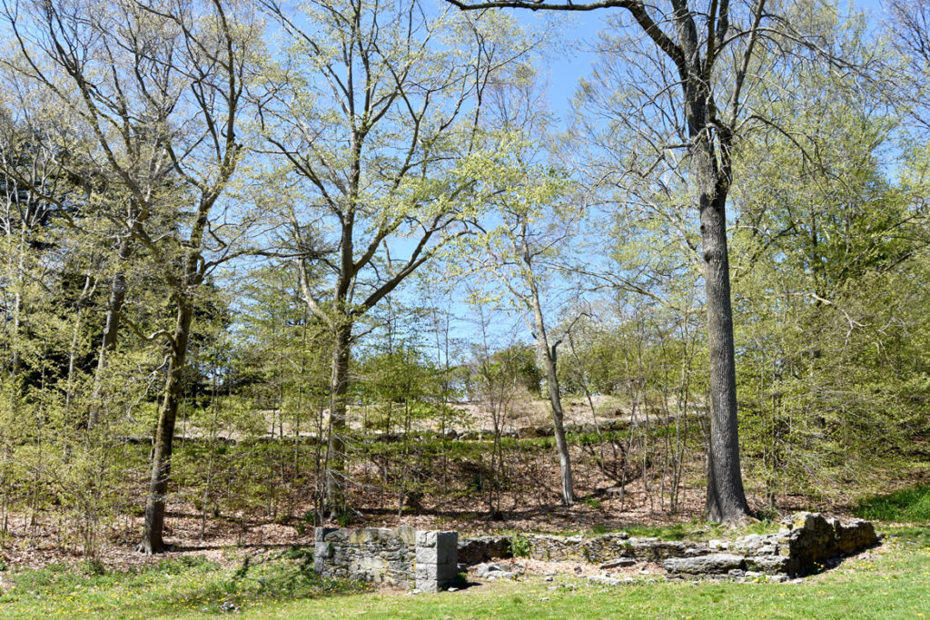 Ruins at Arnold Arboretum, Boston, May 5, 2020. (Greg Cook photo)