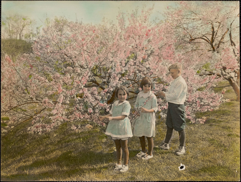 "Leon Abdalian, ""At Arnold Arboretum,"" May 1922. (Boston Public Library Arts Department)"