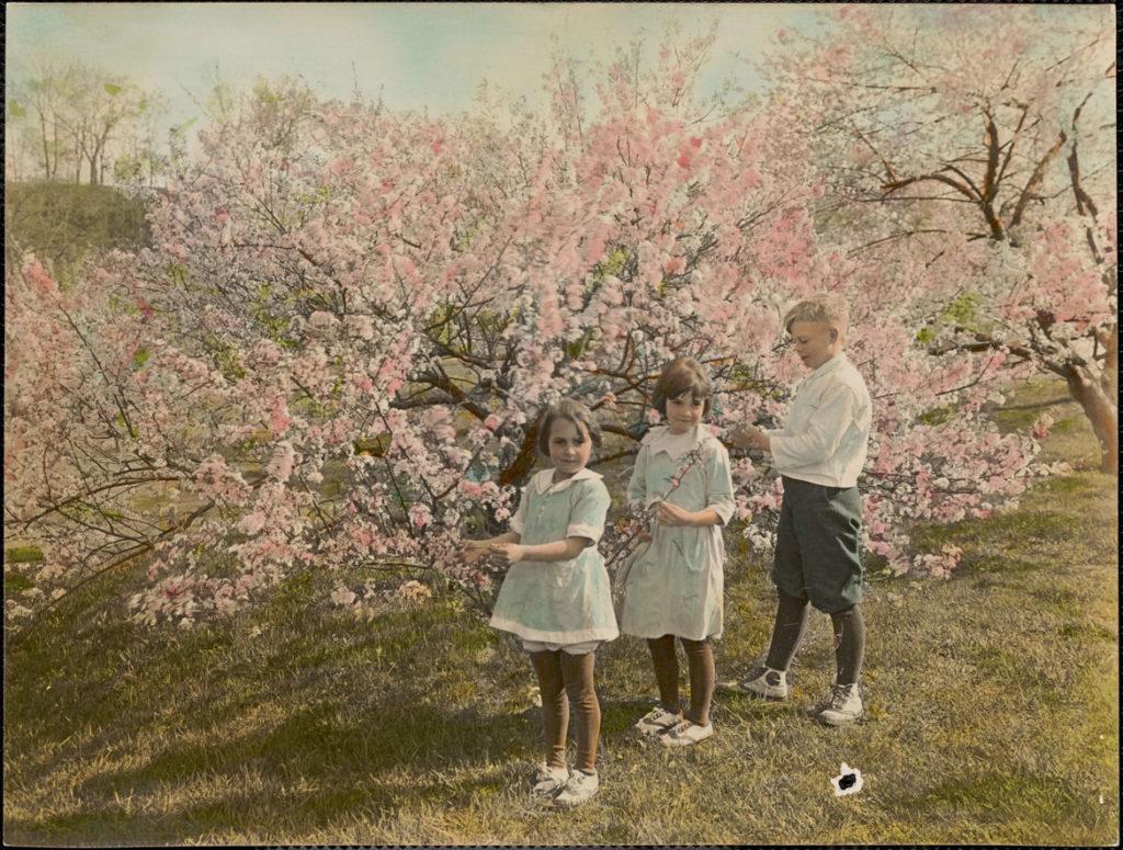 "Leon Abdalian, ""At Arnold Arboretum,"" May 1922. (Boston Public Library Arts Department)"
