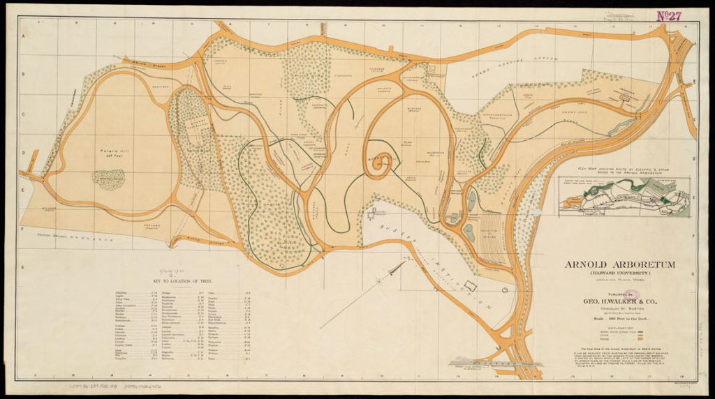 "Geo. H. Walker & Co, ""Map of Arnold Arboretum showing location of the trees and shrubs,"" 1900. (Boston Public Library 