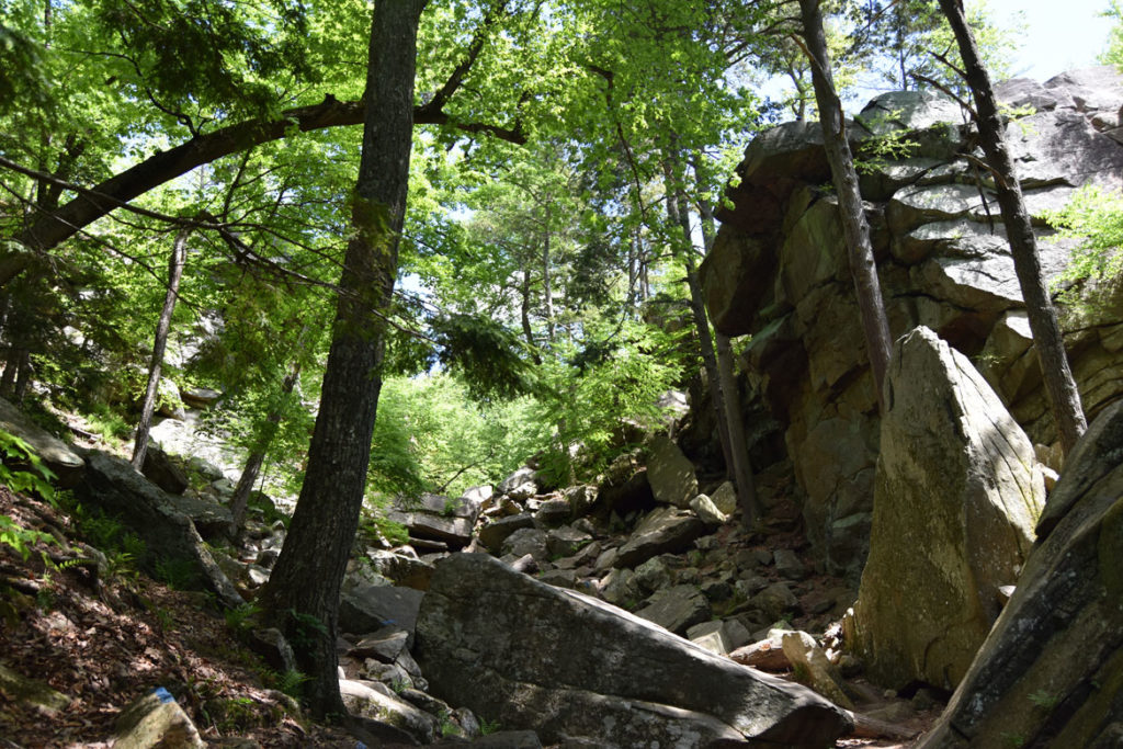 Little Purgatory brook at Purgatory Chasm, Sutton, Massachusetts, May 26, 2020. (Greg Cook photo)