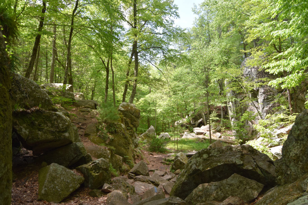 Purgatory Chasm, Sutton, Massachusetts, May 26, 2020. (Greg Cook photo)