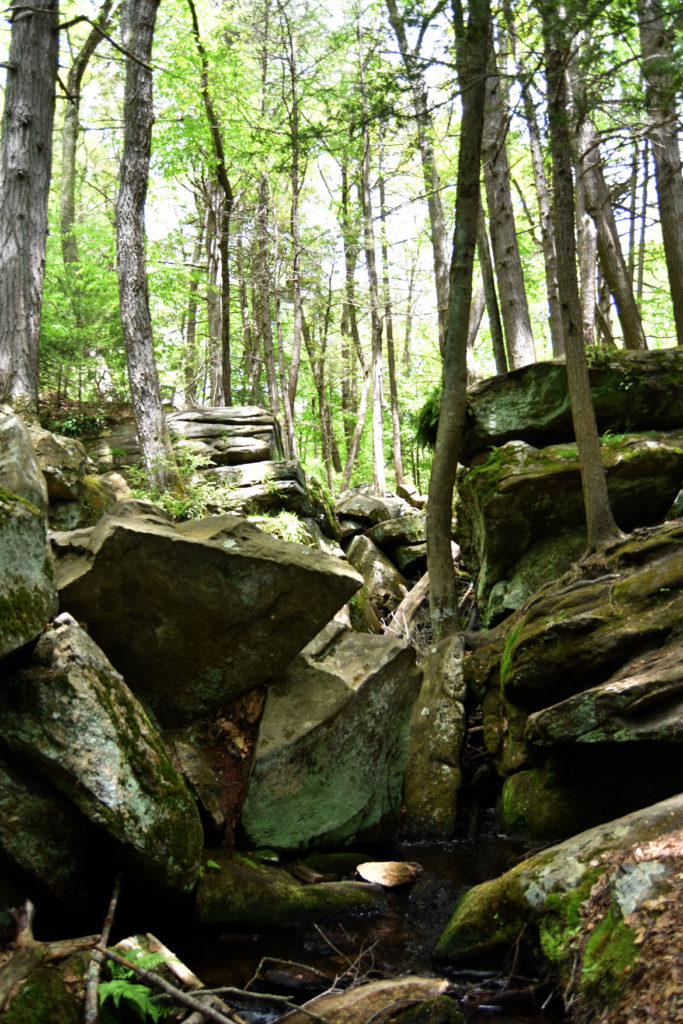 Little Purgatory Chasm, Sutton, Massachusetts, May 26, 2020. (Greg Cook photo)