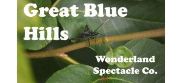 Climb The Blue Hills | Wonderland Spectacle Co.
