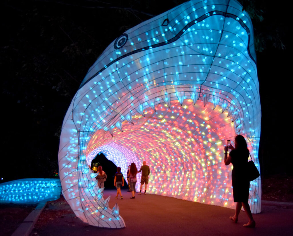 """Boston Lights: A Lantern Experience"" at the Franklin Park Zoo, Boston, Aug. 20, 2020. (© Greg Cook photo)"