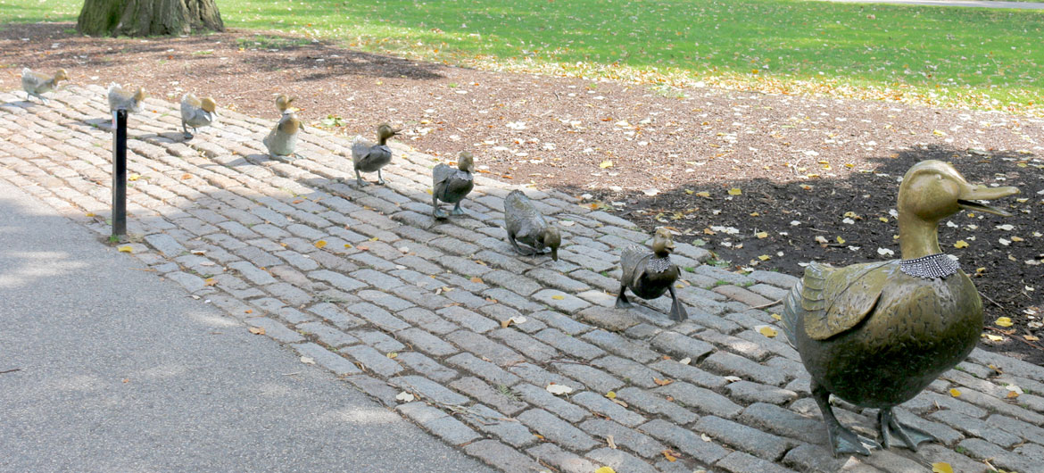 """Make Way for Ducklings"" statues in Boston Public Garden outfitted with lacy collars in honor of Ruth Bader Ginsburg by Karyn Alzayer, Oct. 3, 2020. (Photo by Daud Alzayer)"