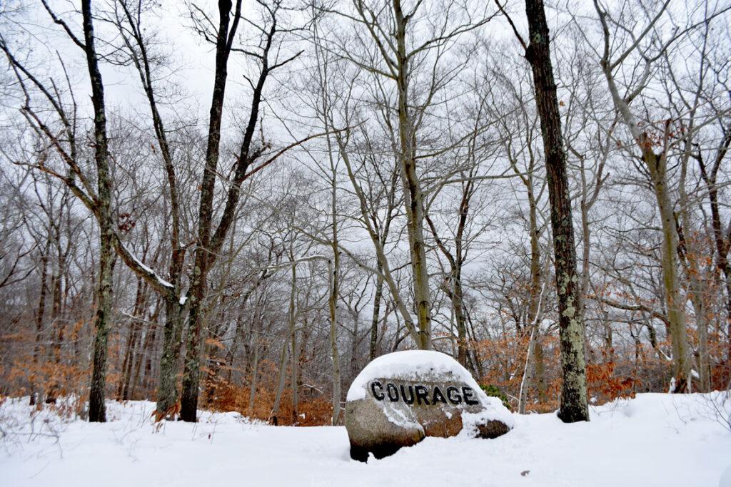 Dogtown, Gloucester, Dec. 20, 2020. (©Greg Cook photo)
