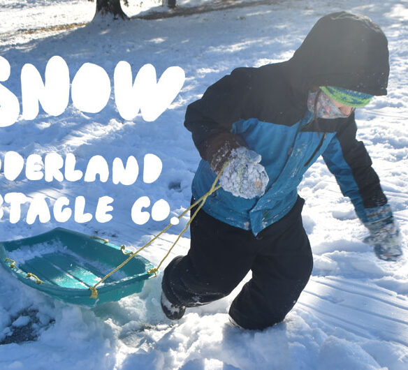 Fun In The Snow | Wonderland Spectacle Co.