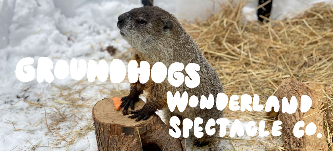 """""""Groundhogs"""" by Wonderland Spectacle Co."""