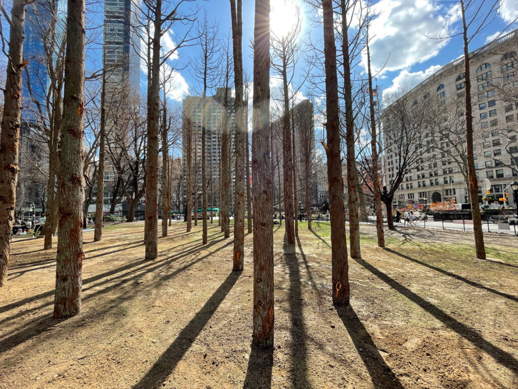 """Maya Lin, """"Ghost Forest,"""" 2021. (Courtesy the artist and Madison Square Park Conservancy / Photo credit: Maya Lin Studio)"""
