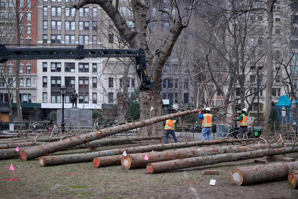 """Maya Lin, Installation of """"Ghost Forest"""" in process in Madison Square Park, 2021. (Courtesy the artist and Madison Square Park Conservancy / Photo credit: Andy Romer)"""