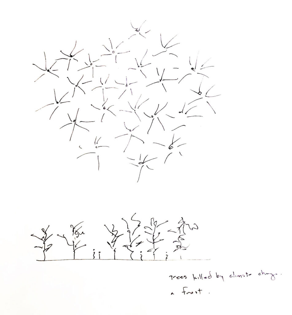 """Maya Lin, """"Ghost Forest"""" preparatory sketch, 2019. (Courtesy of the artist and Pace Gallery)"""