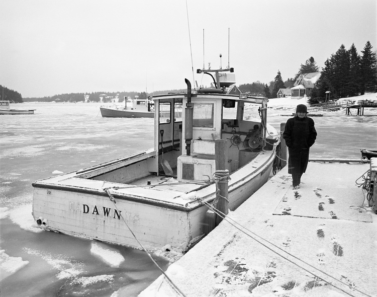 "S.B. Walker, ""Dawn, Isle au Haut,"" 2015. (Courtesy Center for Maine Contemporary Art)"