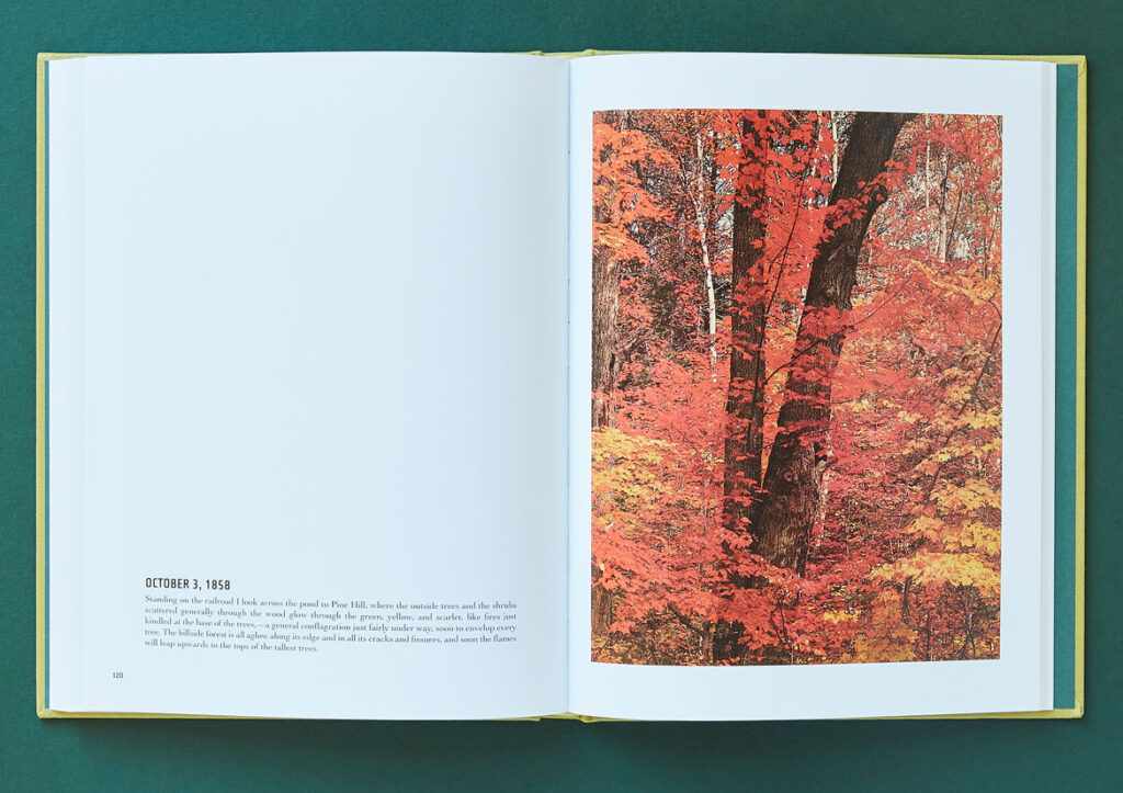 """From """"In Wildness Is the Preservation of the World,"""" words by Henry David Thoreau, photos by Eliot Porter. (Chronicle Books)"""