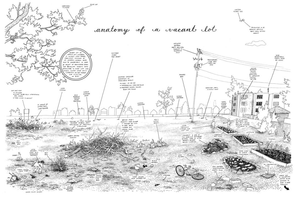 """Anders Nilsen, """"Anatomy of a Vacant Lot,"""" 2010-11. (Image courtesy of the artist)"""