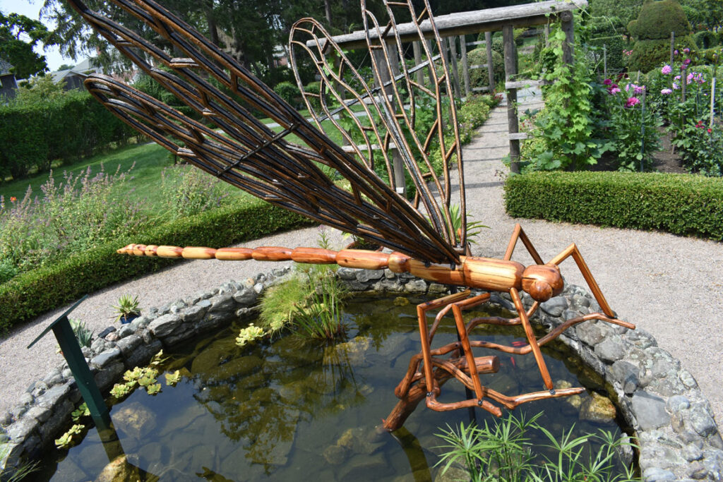 """""""Damselfly"""" in David Rogers's """"Big Bugs"""" at Green Animals Topiary Garden, Portsmouth, Rhode Island, August 2021. (©Greg Cook photo)"""