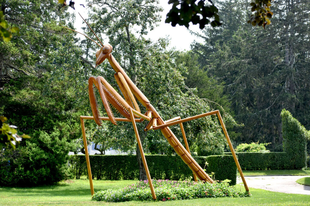 """""""Praying Mantis"""" in David Rogers's """"Big Bugs"""" at Green Animals Topiary Garden, Portsmouth, Rhode Island, August 2021. (©Greg Cook photo)"""