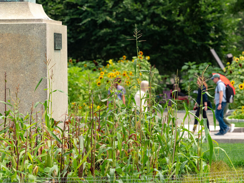 "Elizabeth James-Perry's ""Raven Reshapes Boston"" garden at the Huntington Avenue lawn on Boston's Museum of Fine Arts, July 21, 2021. (Photo © Museum of Fine Arts, Boston)"